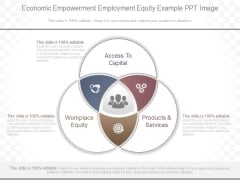 Economic Empowerment Employment Equity Example Ppt Image