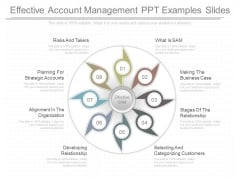 Effective Account Management Ppt Examples Slides