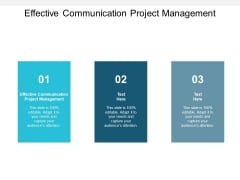 Effective Communication Project Management Ppt PowerPoint Presentation Gallery Vector