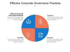 Effective Corporate Governance Practices Ppt PowerPoint Presentation Icon Model Cpb