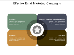 Effective Email Marketing Campaigns Ppt PowerPoint Presentation Gallery Slide Download Cpb