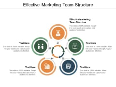 Effective Marketing Team Structure Ppt PowerPoint Presentation Infographic Template Graphics Example Cpb