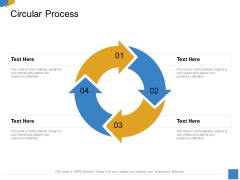 Effective Outcome Launch Roadmap Circular Process Ppt Gallery Format PDF