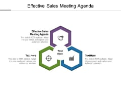 Effective Sales Meeting Agenda Ppt PowerPoint Presentation Professional Icon Cpb