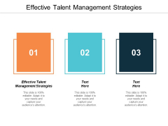 Effective Talent Management Strategies Ppt PowerPoint Presentation Styles Template Cpb