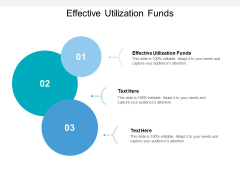 Effective Utilization Funds Ppt PowerPoint Presentation Layouts Elements Cpb