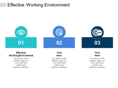 Effective Working Environment Ppt PowerPoint Presentation Portfolio Example Introduction Cpb