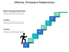 Effective Workplace Relationships Ppt PowerPoint Presentation File Maker Cpb