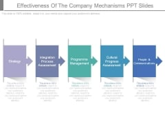 Effectiveness Of The Company Mechanisms Ppt Slides