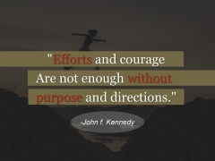 Efforts And Courage Ppt PowerPoint Presentation Show Deck
