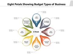 Eight Petals Showing Budget Types Of Business Ppt PowerPoint Presentation Professional Vector PDF