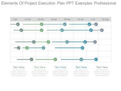 Elements Of Project Execution Plan Ppt Examples Professional