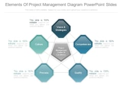 Elements Of Project Management Diagram Powerpoint Slides