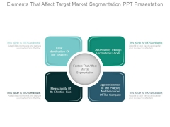 Elements That Affect Target Market Segmentation Ppt Presentation