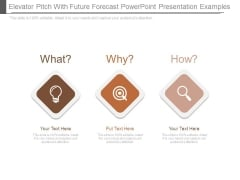 Elevator Pitch With Future Forecast Powerpoint Presentation Examples