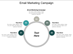 Email Marketing Campaign Ppt PowerPoint Presentation Professional Icons Cpb