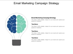 Email Marketing Campaign Strategy Ppt PowerPoint Presentation Model Tips Cpb