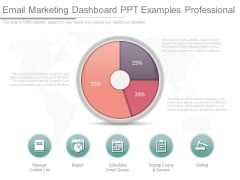 Email Marketing Dashboard Ppt Examples Professional