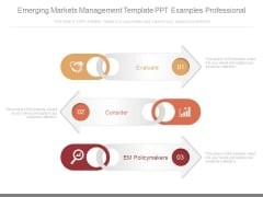 Emerging Markets Management Template Ppt Examples Professional