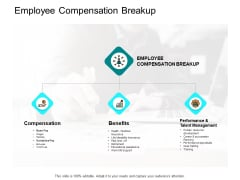 Employee Compensation Breakup Ppt PowerPoint Presentation Infographics Brochure