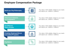 Employee Compensation Package Pay Philosophy Ppt PowerPoint Presentation Portfolio Grid