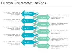 Employee Compensation Strategies Ppt PowerPoint Presentation Model Cpb