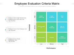 Employee Evaluation Criteria Matrix Ppt PowerPoint Presentation Gallery Model PDF