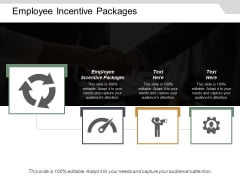 Employee Incentive Packages Ppt Powerpoint Presentation Layouts Summary Cpb