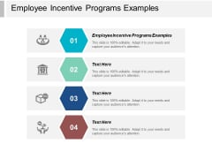 Employee Incentive Programs Examples Ppt PowerPoint Presentation Show Graphics Pictures Cpb