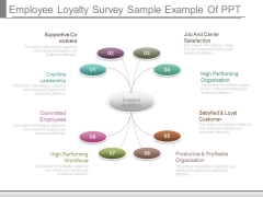 Employee Loyalty Survey Sample Example Of Ppt