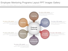 Employee Mentoring Programs Layout Ppt Images Gallery