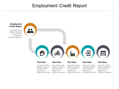 Employment Credit Report Ppt PowerPoint Presentation Inspiration Example Introduction