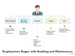 Employment Stages With Auditing And Maintenance Ppt PowerPoint Presentation File Templates PDF