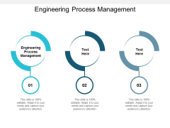 Engineering Process Management Ppt PowerPoint Presentation Layouts Information Cpb