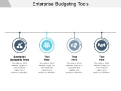 Enterprise Budgeting Tools Ppt PowerPoint Presentation Show Model Cpb