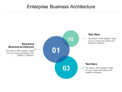 Enterprise Business Architecture Ppt PowerPoint Presentation Pictures File Formats Cpb