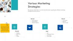 Enterprise Handbook Various Marketing Strategies Ppt Ideas Example Introduction PDF