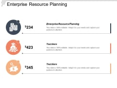 Enterprise Resource Planning Ppt PowerPoint Presentation Model Examples Cpb