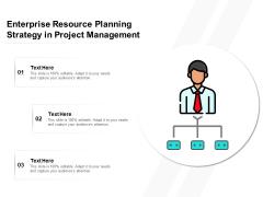 Enterprise Resource Planning Strategy In Project Management Ppt PowerPoint Presentation Portfolio Gallery PDF