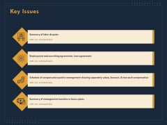 Enterprise Review Key Issues Ppt Pictures Example Topics PDF