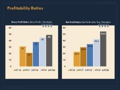 Enterprise Review Profitability Ratios Ppt Infographics Example Introduction PDF