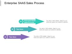 Enterprise SAAS Sales Process Ppt PowerPoint Presentation Styles Templates Cpb
