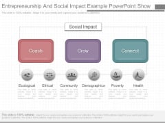 Entrepreneurship And Social Impact Example Powerpoint Show