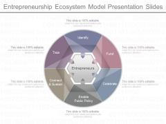Entrepreneurship Ecosystem Model Presentation Slides