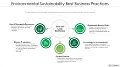Environmental Sustainability Best Business Practices Ppt PowerPoint Presentation File Graphic Tips PDF