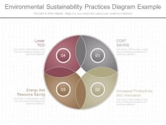 Environmental Sustainability Practices Diagram Example
