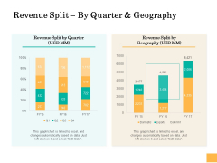 Equity Capital Funding Revenue Split By Quarter And Geography Ppt Show Samples PDF