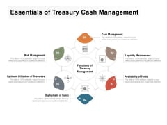 Essentials Of Treasury Cash Management Ppt PowerPoint Presentation Professional Design Inspiration