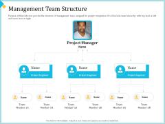 Establish Management Team Management Team Structure Ppt Infographics Example Topics PDF