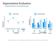 Evaluating Target Market Segments Segmentation Evaluation Ppt Professional Template PDF